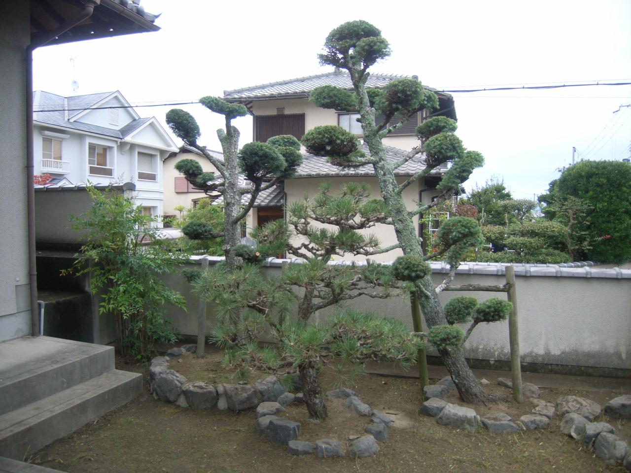 剪定 愛そう日本庭園 AFTER