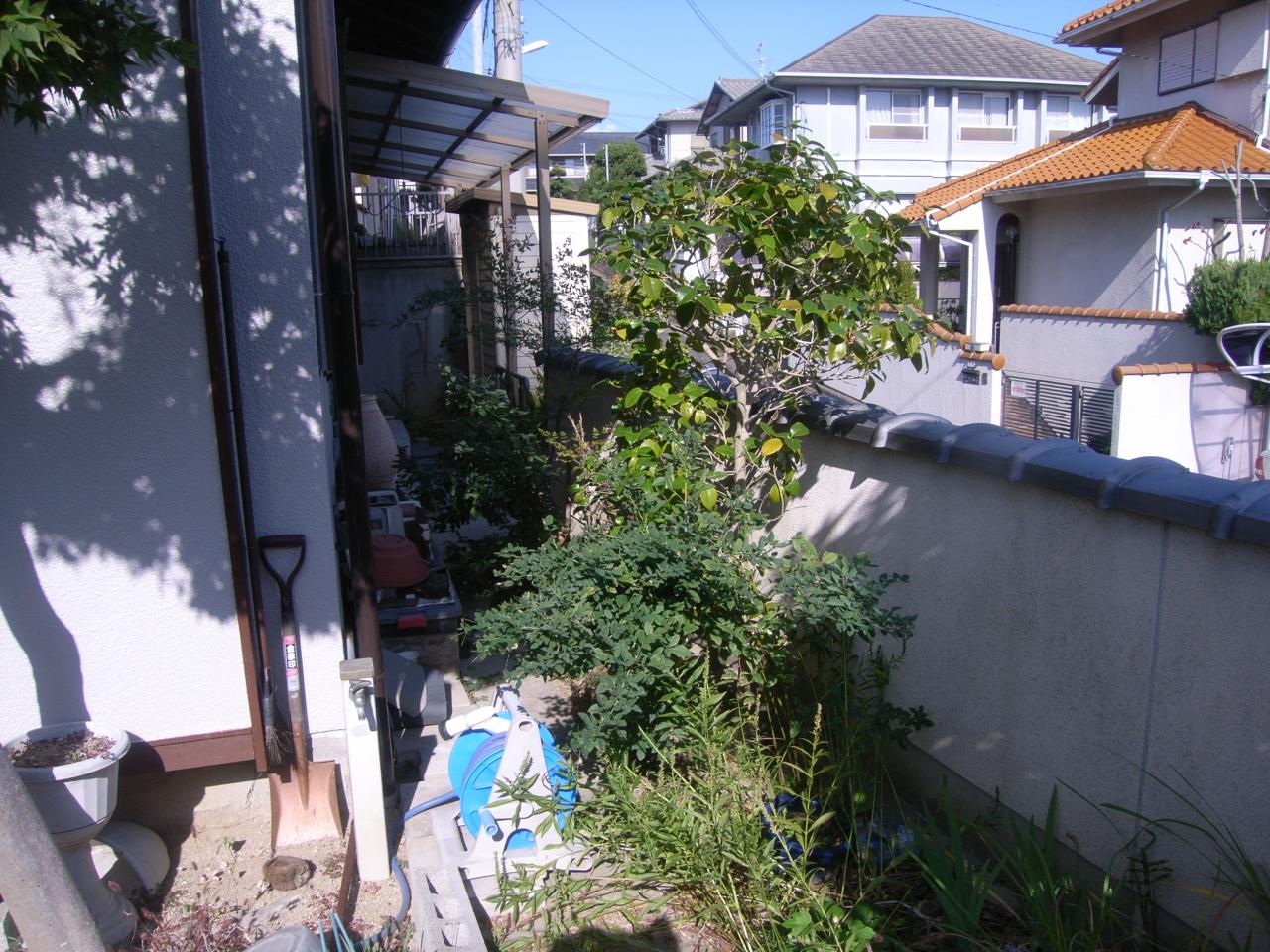 木作り剪定 引き継ぐ日本庭園 BEFORE