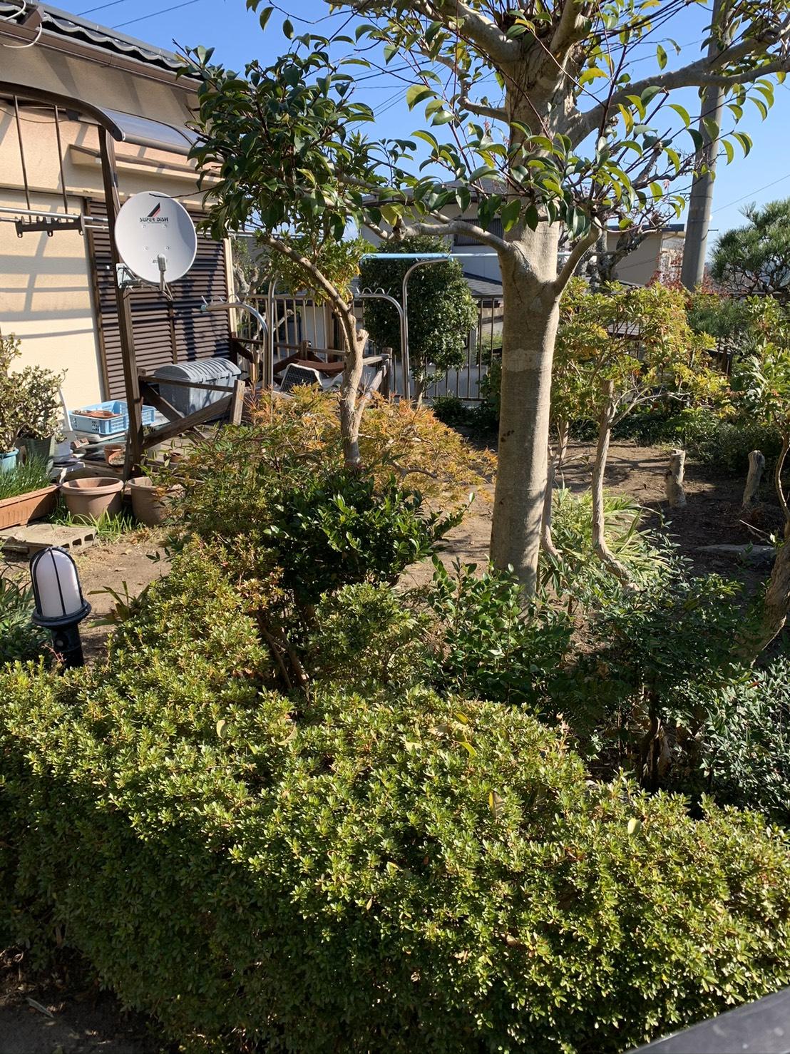 お庭の模様替え BEFORE